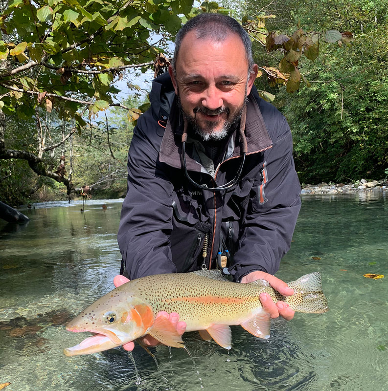Beautiful Rainbow trout - Fly fishing guide Slovenia